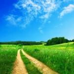 Giải mã giấc chiêm bao thấy con đường & nằm ngủ mơ thấy lối đi bộ